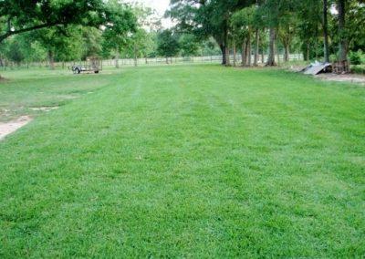 Grass-Parking-6-compressor (1)